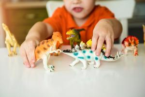 A Importância dos animais de Brincar