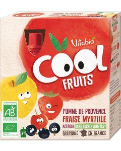 Pack 4 Cool Fruits Bio Maçã, Morango Mirtilo e Acerola