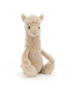 Bashful Lama