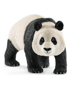 Panda Macho