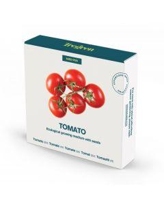 Sementes de Tomate em Pote de Sementeira