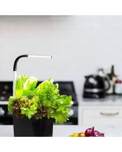 Horta de Cozinha Tregren T3 Black