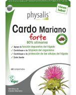 Cardo Mariano Forte