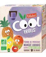 Pack 4 Cool Fruits Bio Maçã Manga Abacaxi e Acerola