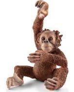 Cria de Orangotango